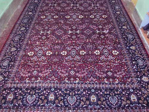 Staple Hand Knotted Rug In Switzerland
